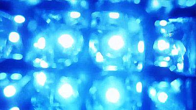 Light Leaks Element 483
