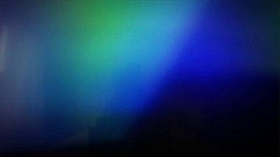 Light Leaks Element 492