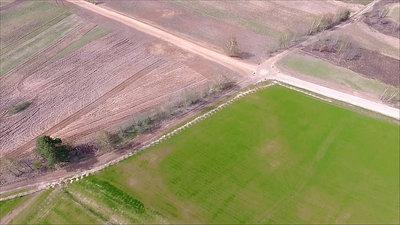 Flight Over Meadow 7