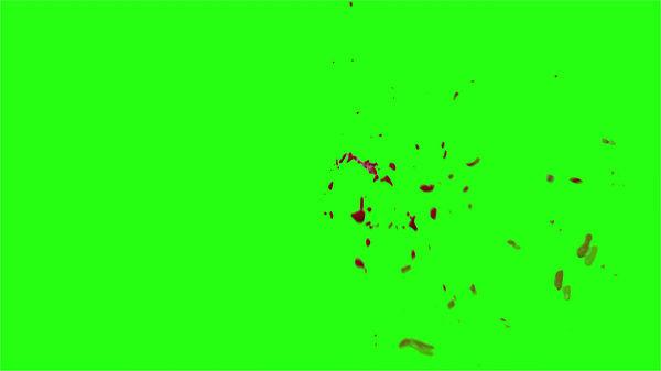 Hd Blood Burst Motion Blur Green Screen 184