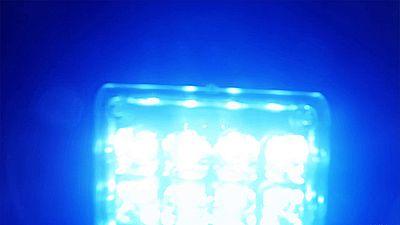 Light Leaks Element 488