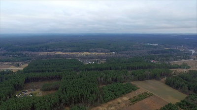 Aerial View Over The Forest 2