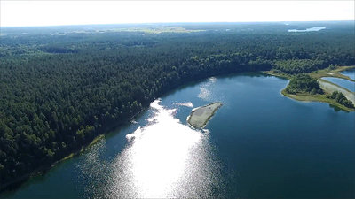 Flight Over The Lake Near Forest 20