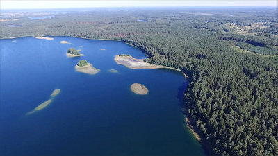 Flight Over The Lake Near Forest 26