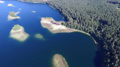 Flight Over The Lake Near Forest 28