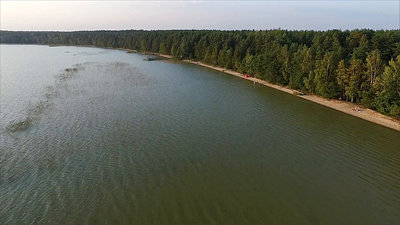 Flight Over The Lake Near Forest 33