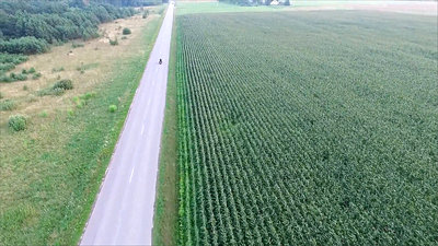 Flying Over The Corn Field Near Road, Motorbike Passing By