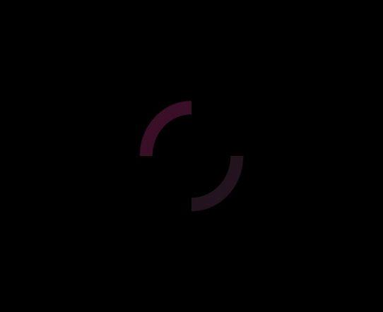 4K Circle Flat Motion Graphics Element