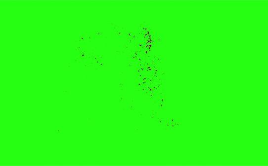 Hd Blood Burst Motion Blur Green Screen 107
